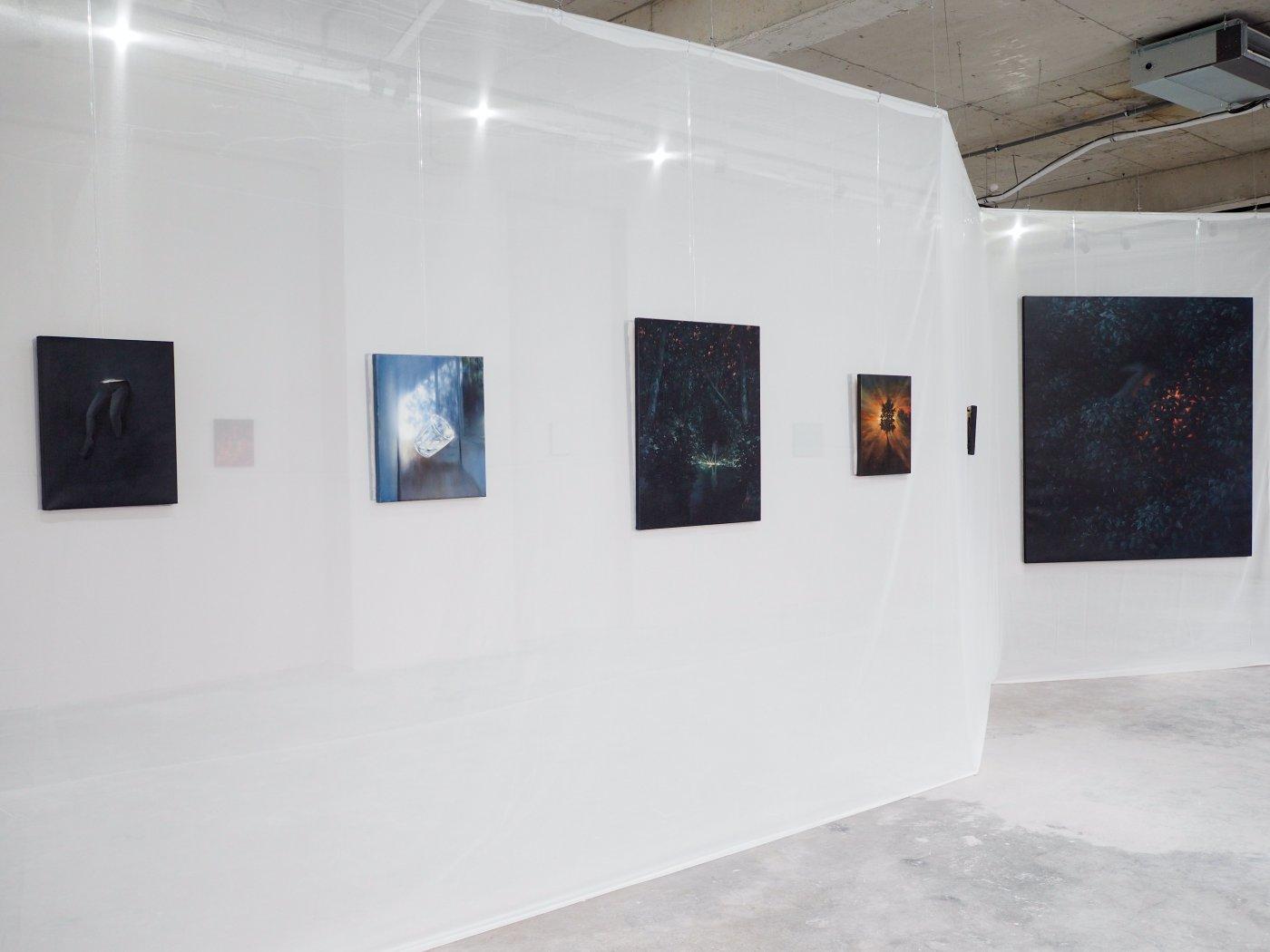 Mobius Gallery Andrei Gamart 2021 2