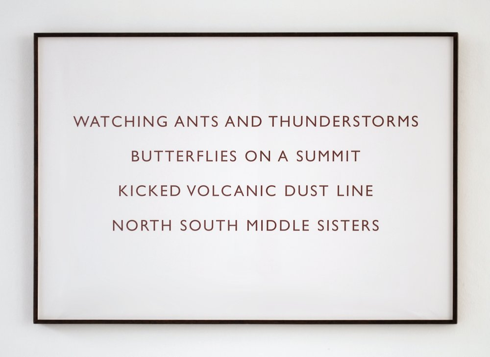 Watching ants and thunderstorms