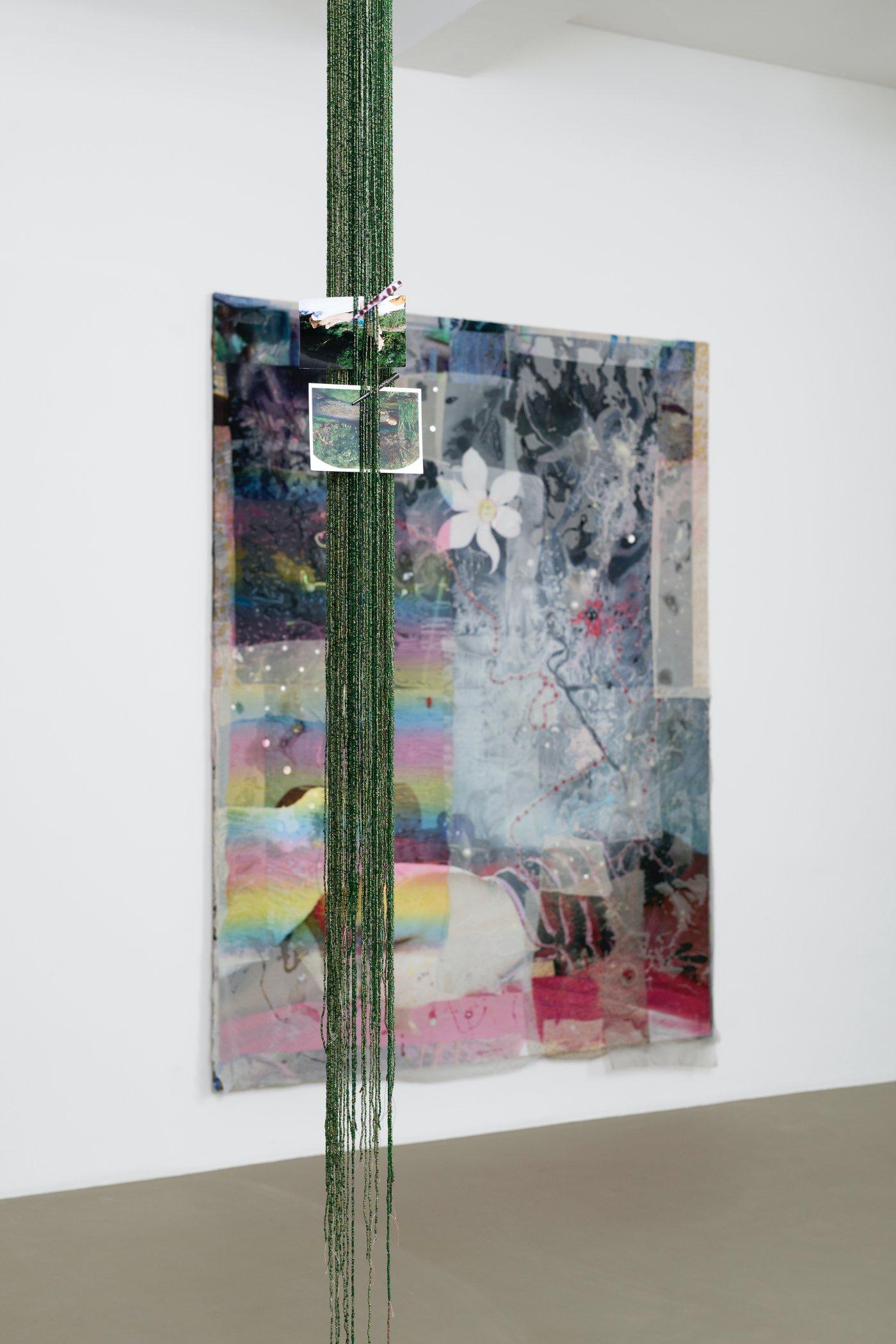 Galerie Chantal Crousel Mimosa Echard 2