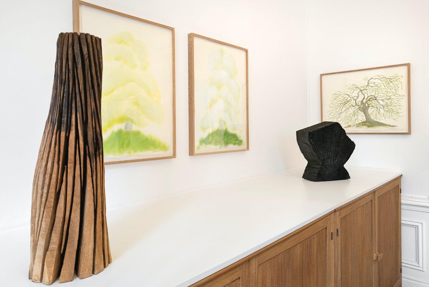 Galerie Lelong Co David Nash 3