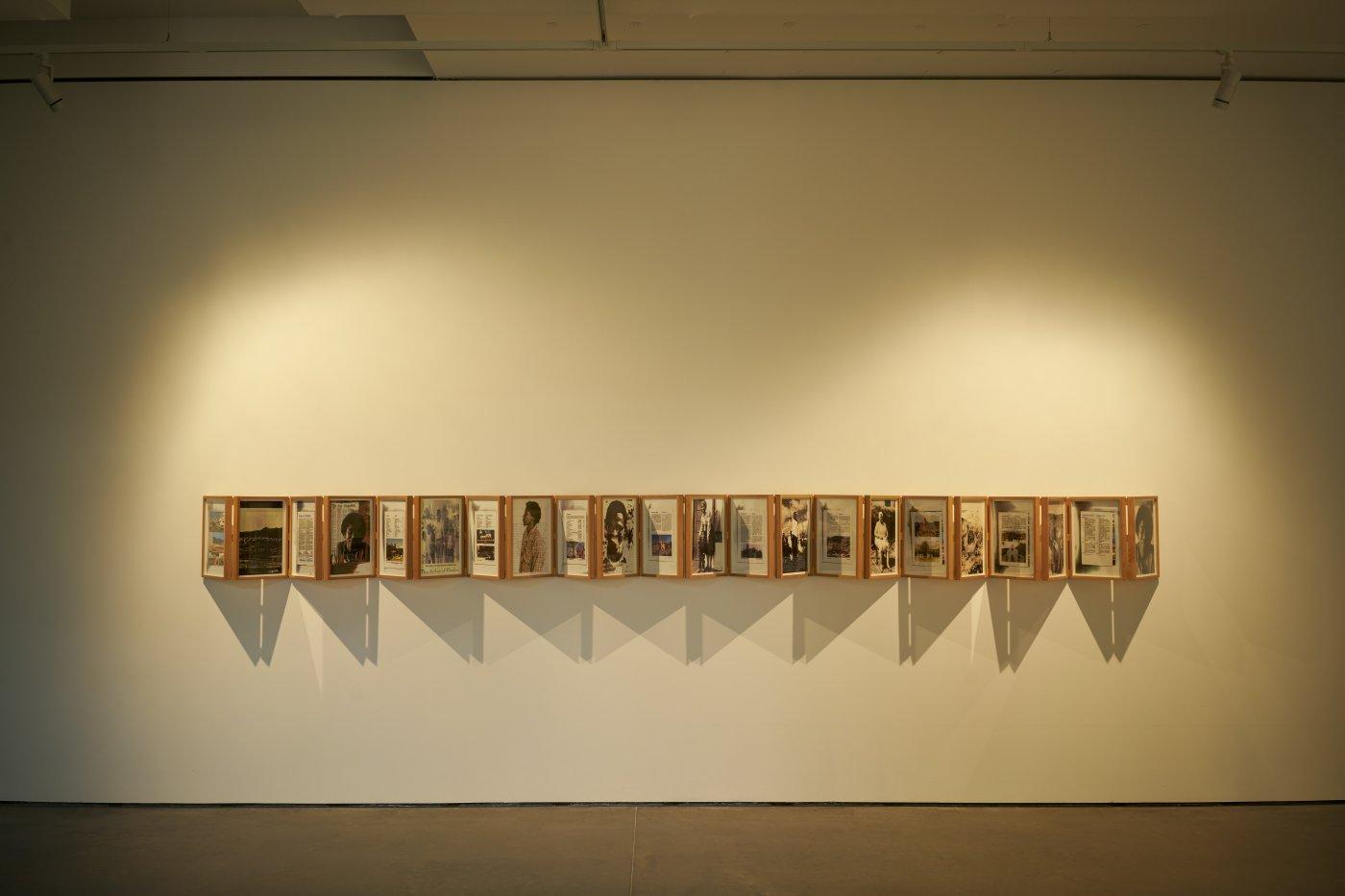 Goodman Gallery Sue Williamson 5