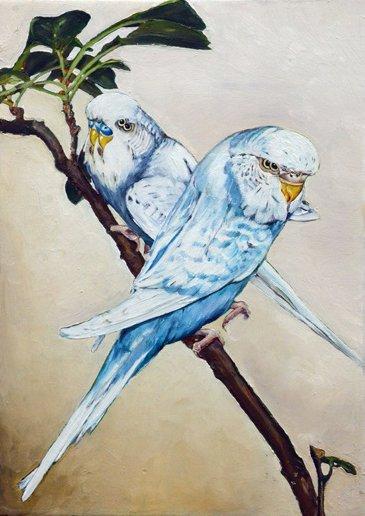 17 oiseau