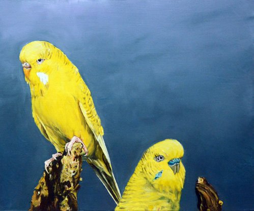 2 oiseau