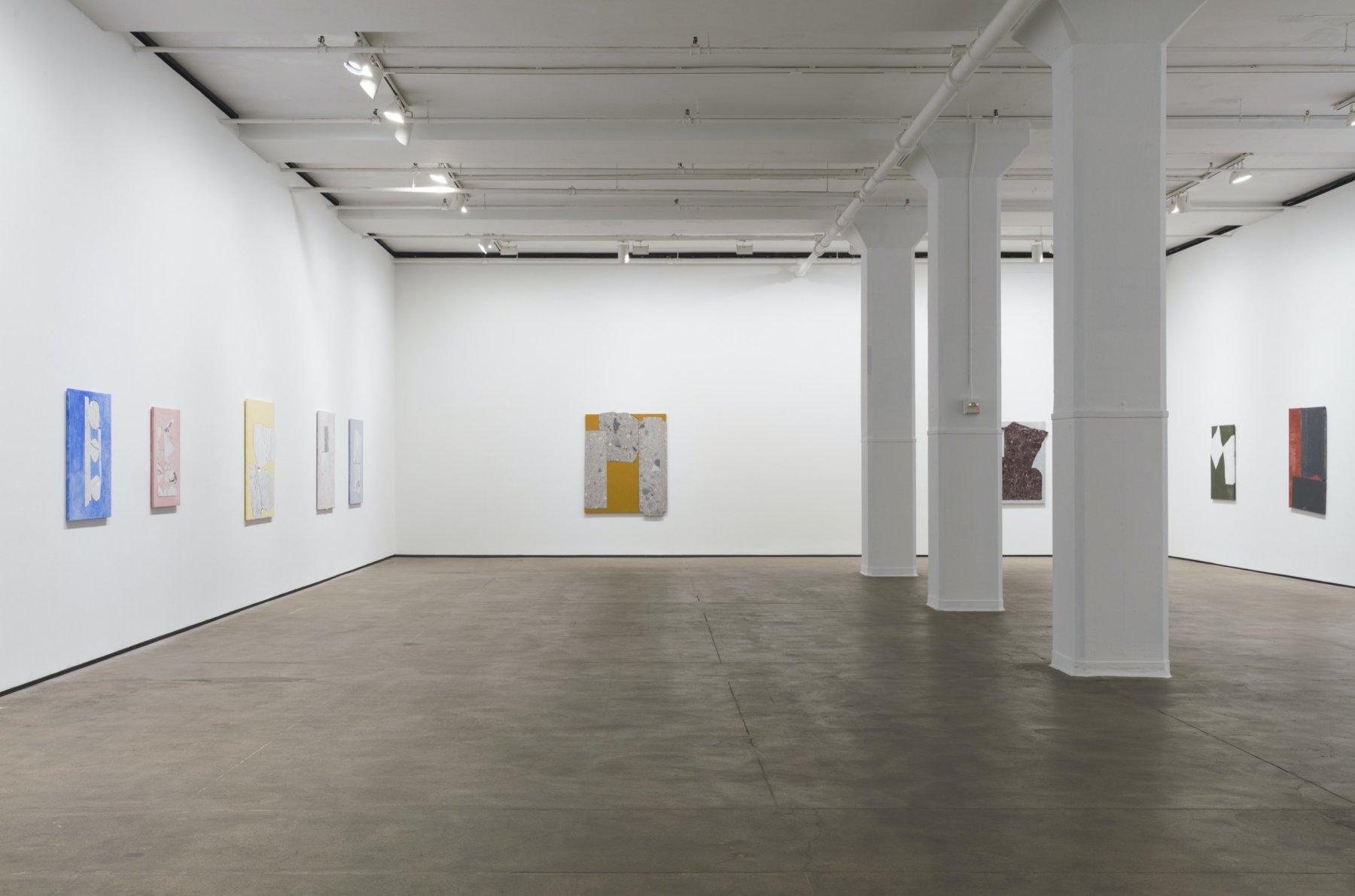 Sean Kelly Gallery Sam Moyer 1