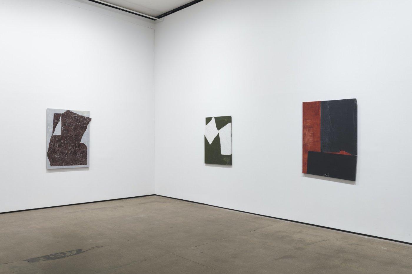Sean Kelly Gallery Sam Moyer 6