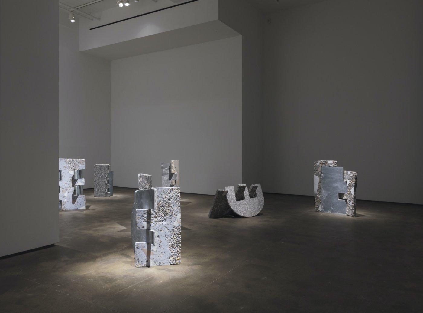 Sean Kelly Gallery Sam Moyer 9