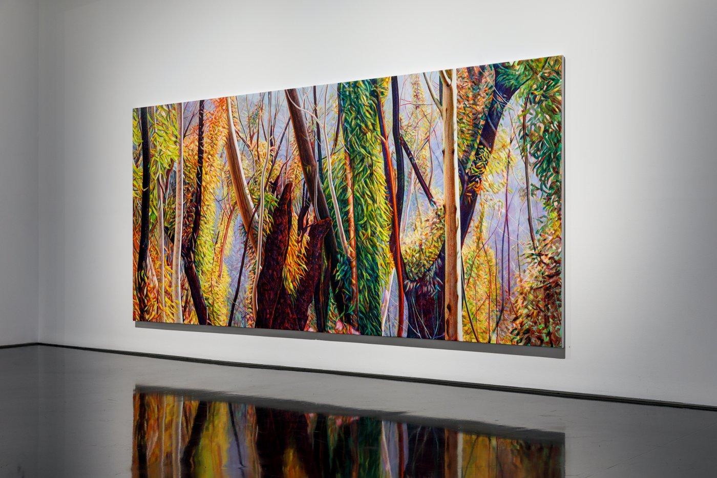 Tolarno Galleries Tim Maguire 3