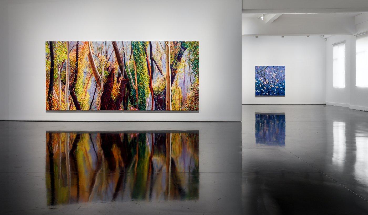 Tolarno Galleries Tim Maguire 4