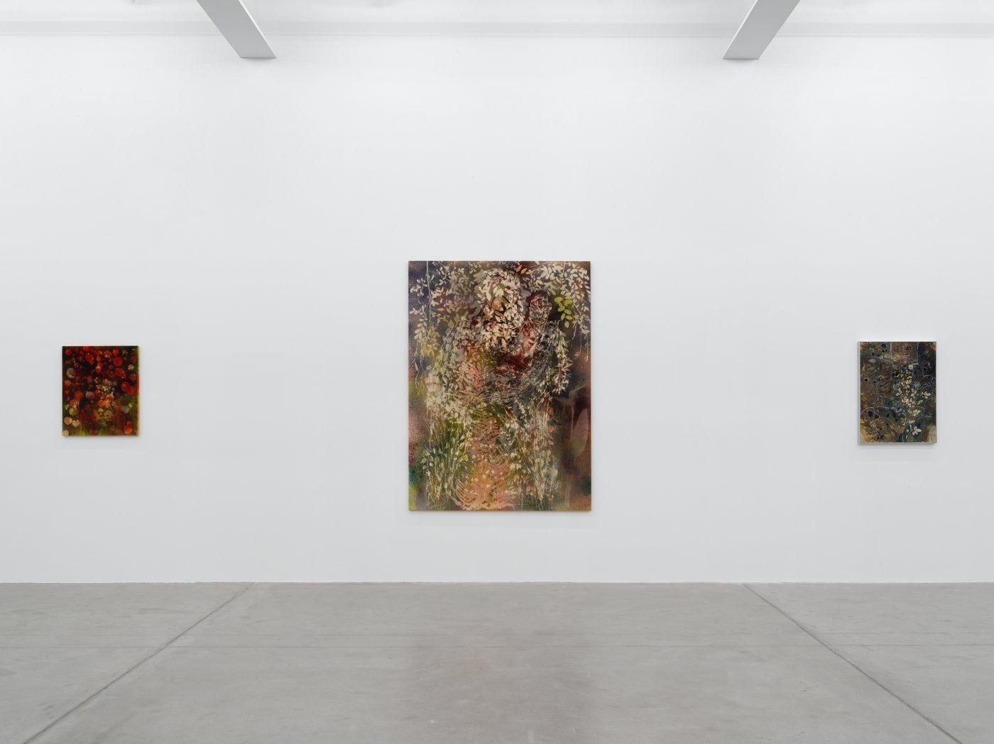 Galerie Eva Presenhuber Maag Areal Sam Falls 11