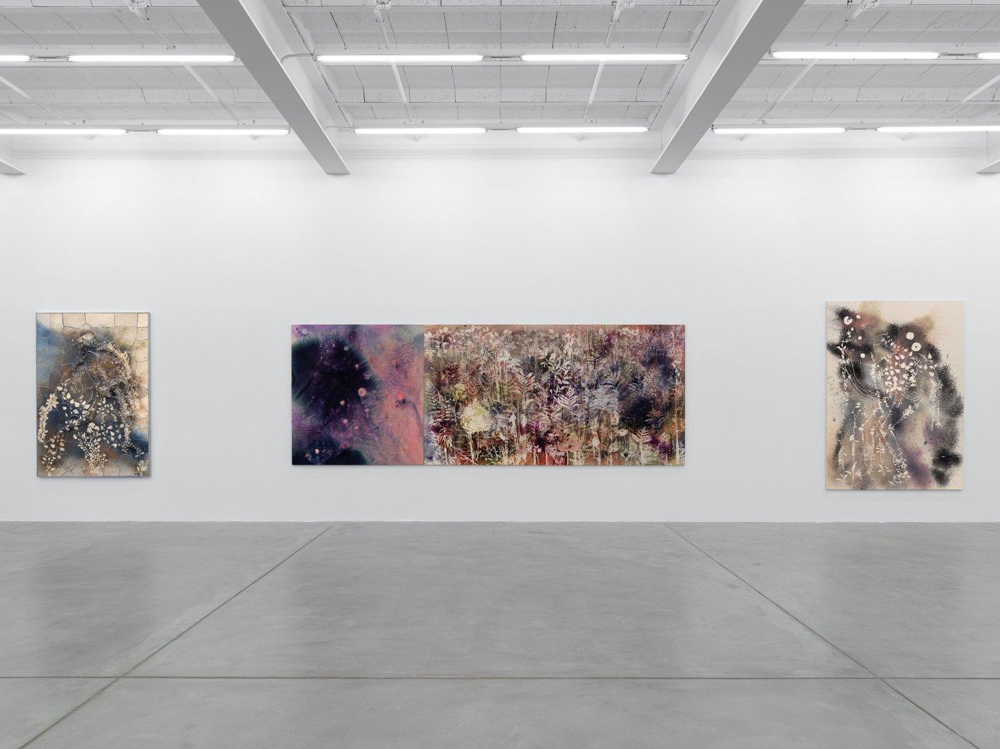 Galerie Eva Presenhuber Maag Areal Sam Falls 2