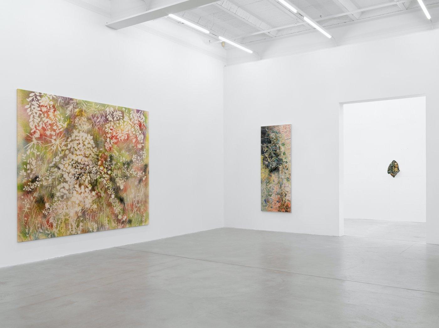 Galerie Eva Presenhuber Maag Areal Sam Falls 5