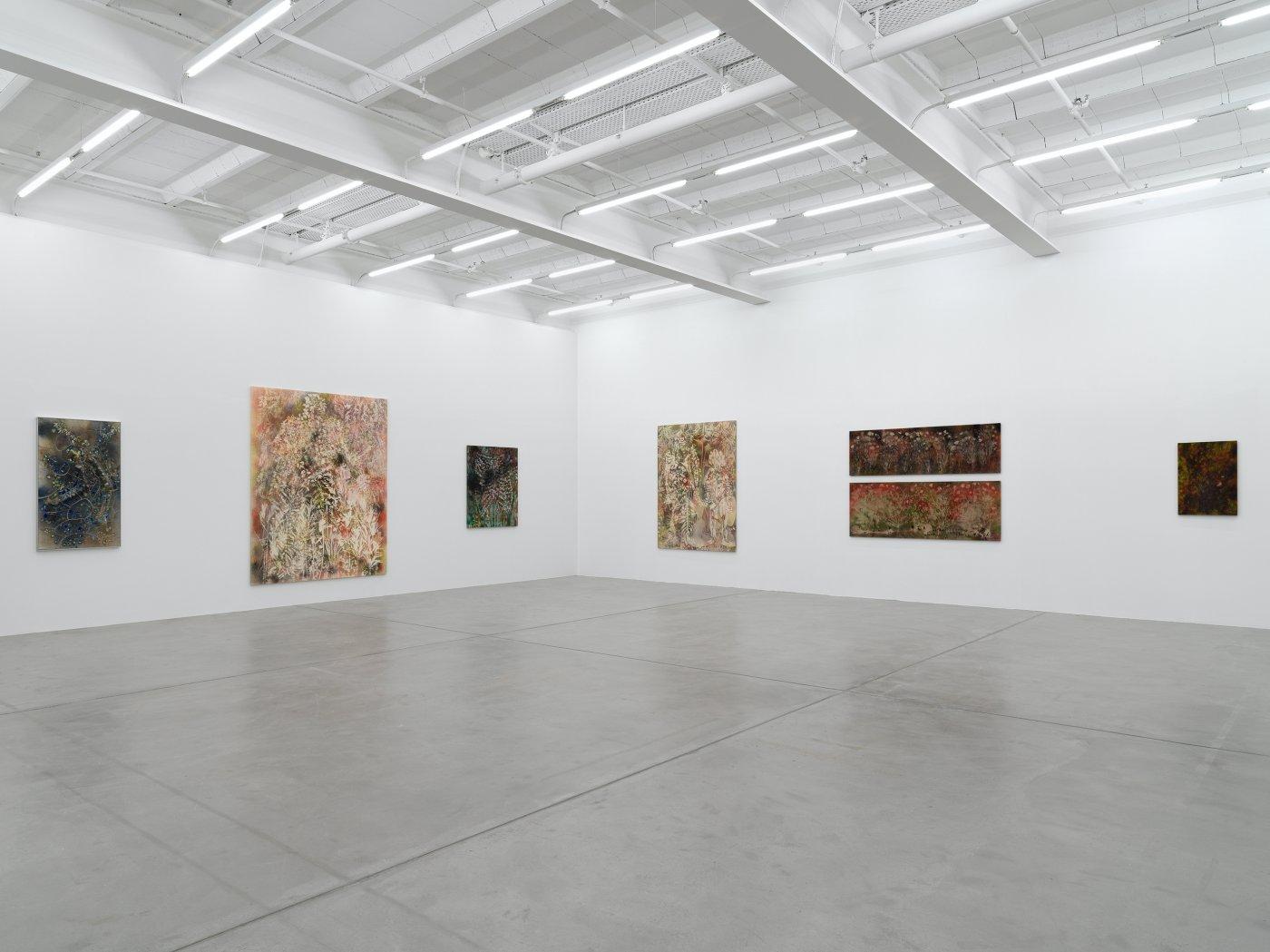 Galerie Eva Presenhuber Maag Areal Sam Falls 9