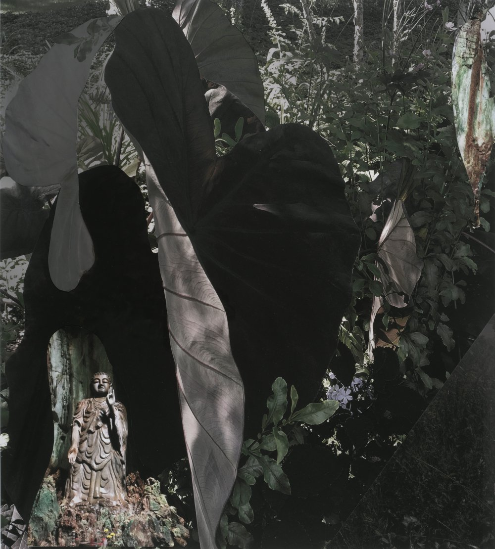 GD19_291