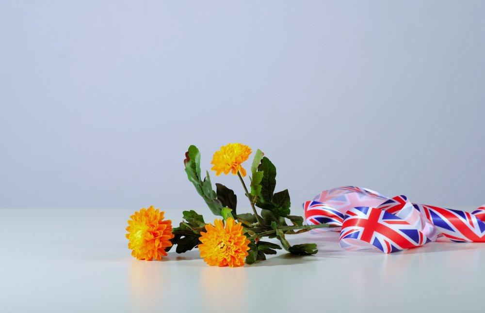 The Fleurop List (Great Britain)