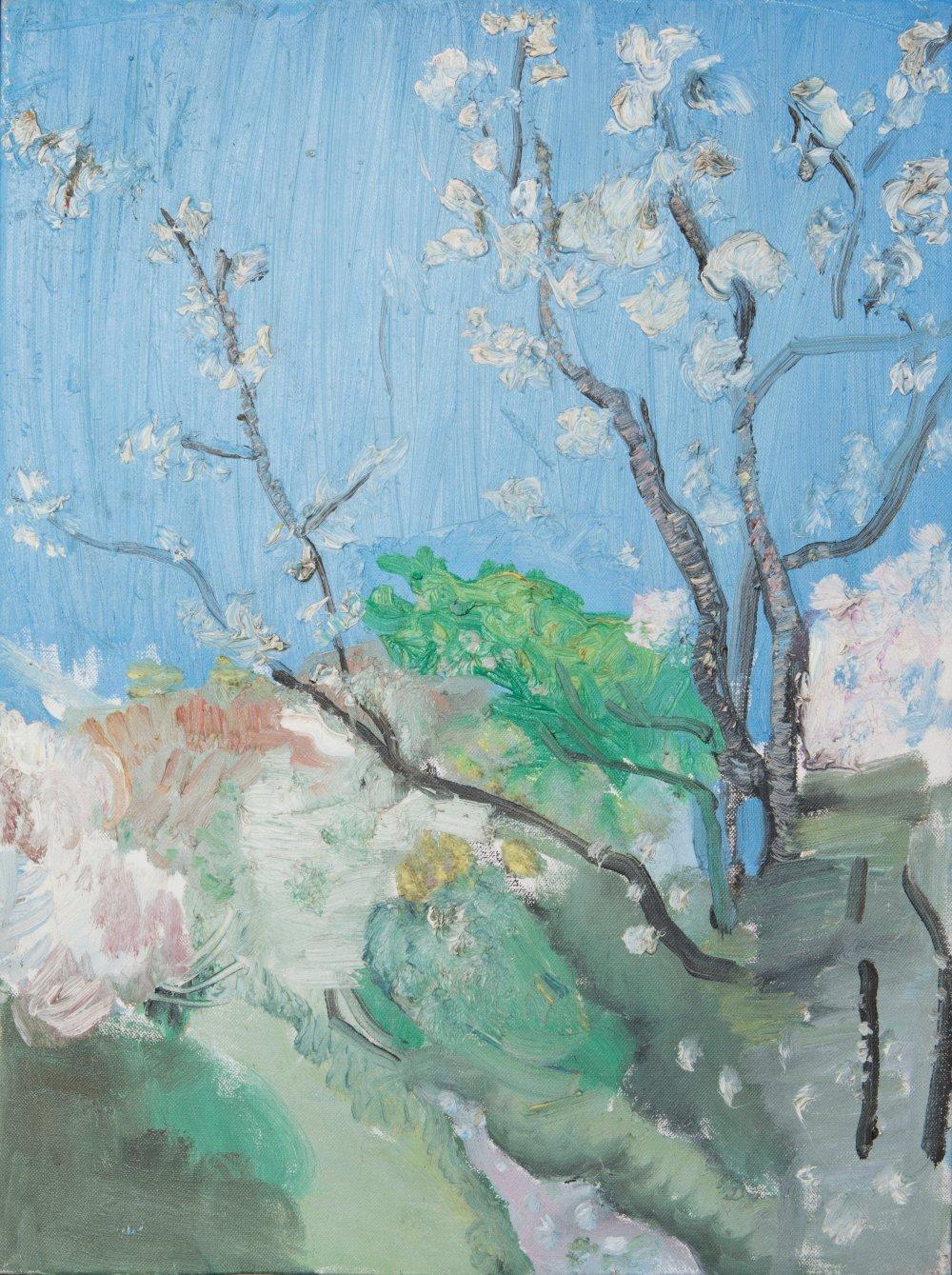 Blossom with Blue Sky