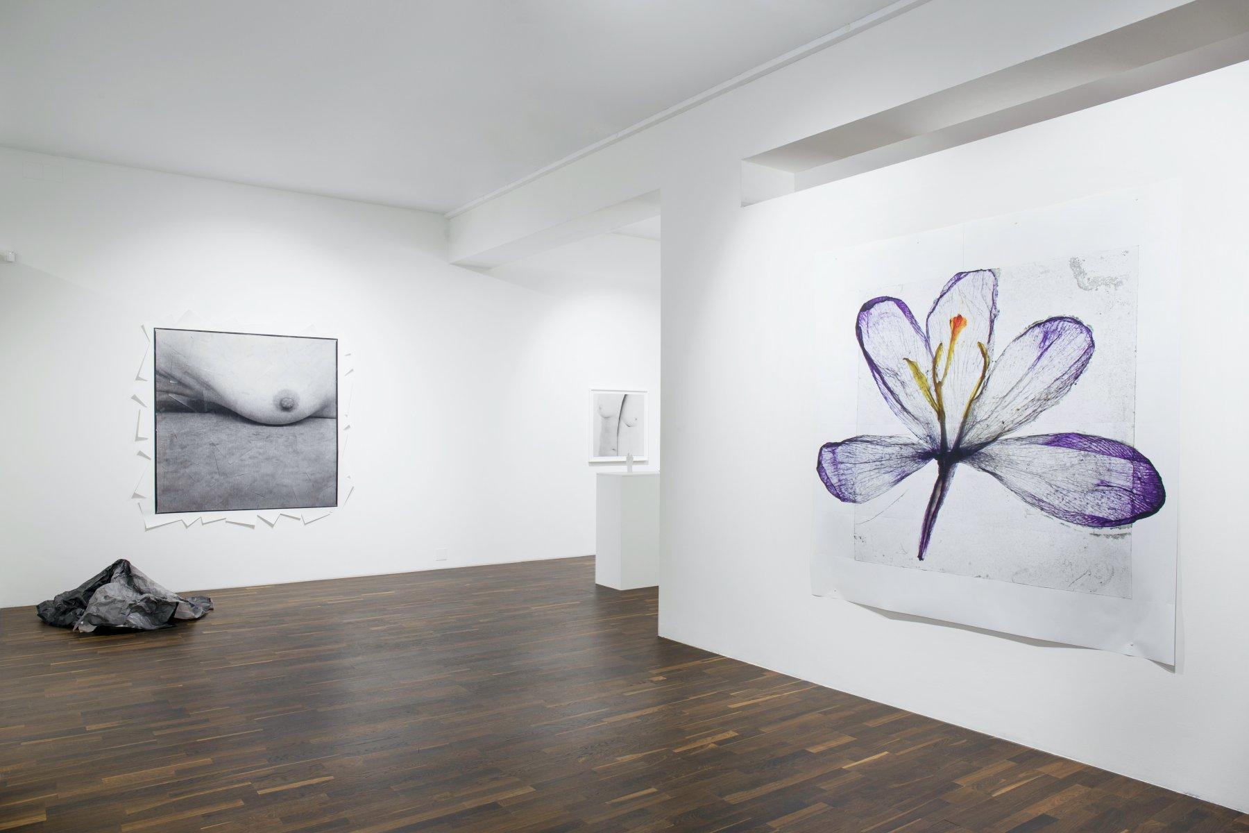 Christophe Guye Galerie Brigitte Lustenberger 1