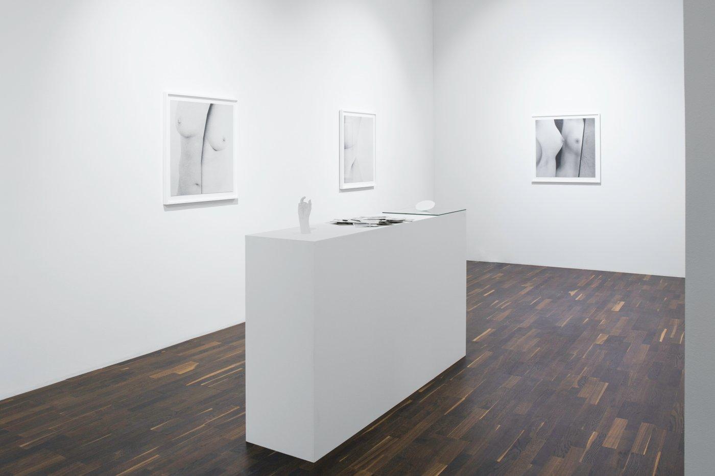 Christophe Guye Galerie Brigitte Lustenberger 4