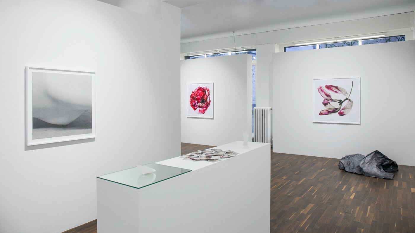 Christophe Guye Galerie Brigitte Lustenberger 5