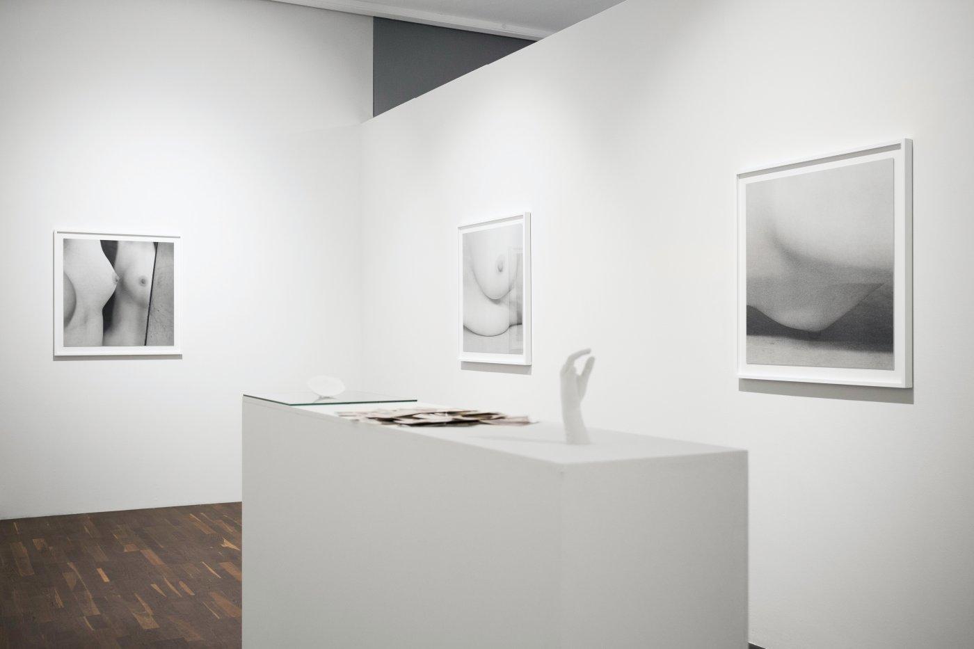 Christophe Guye Galerie Brigitte Lustenberger 6