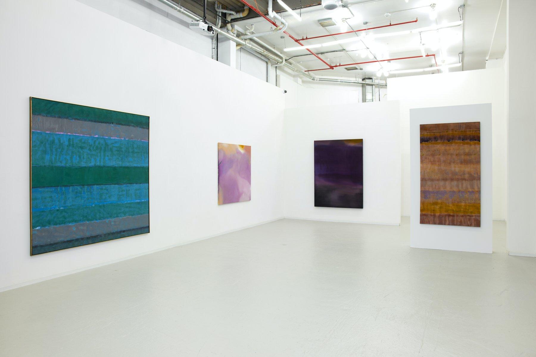 David Richard Gallery Willem de Looper 1