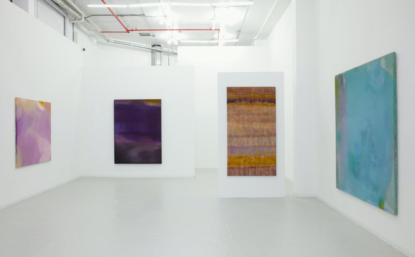 David Richard Gallery Willem de Looper 2