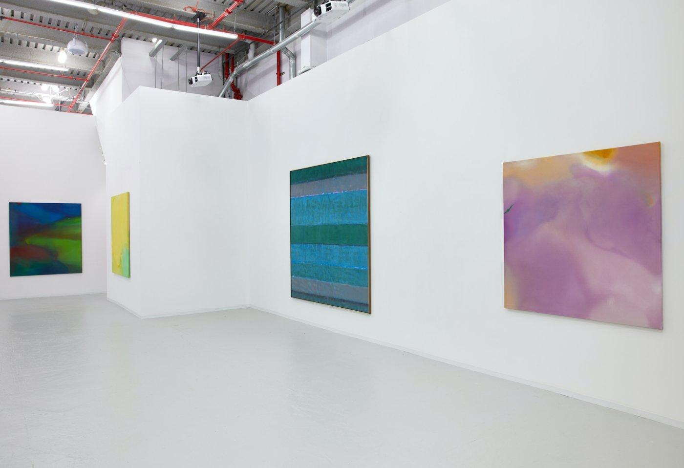 David Richard Gallery Willem de Looper 4