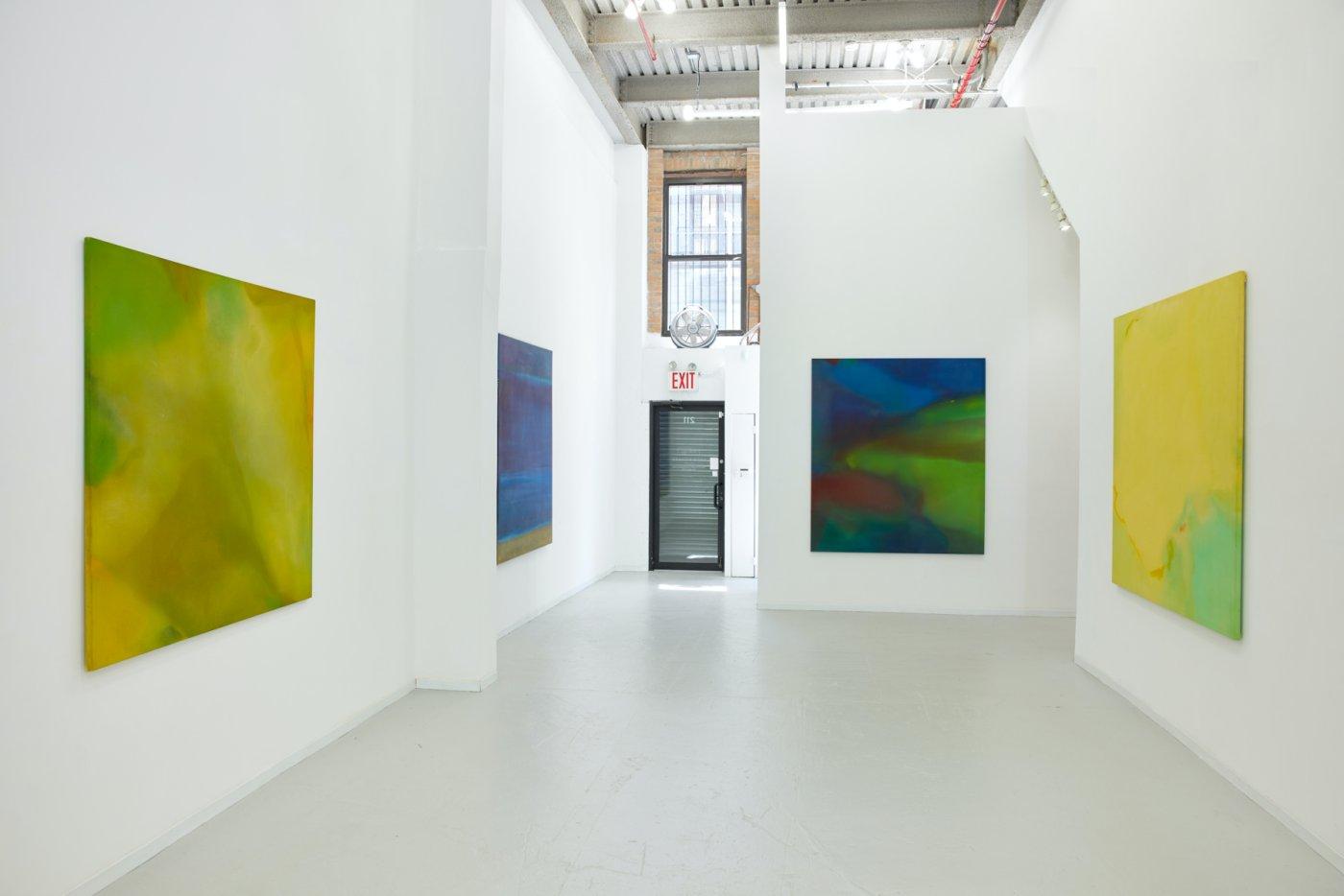 David Richard Gallery Willem de Looper 6