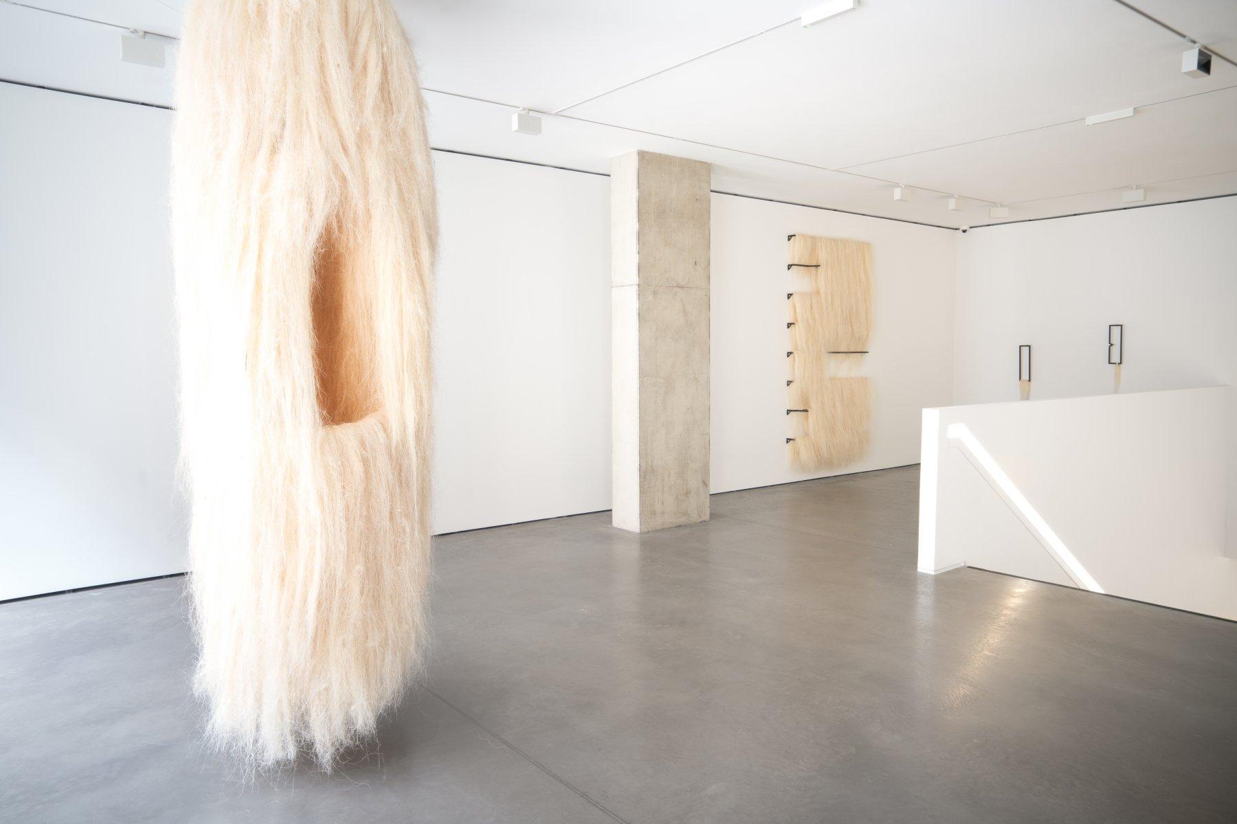 Goodman Gallery Kapwani Kiwanga 1