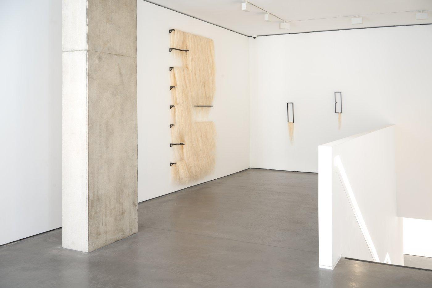 Goodman Gallery Kapwani Kiwanga 2