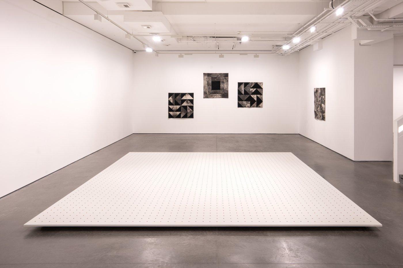 Goodman Gallery Kapwani Kiwanga 5