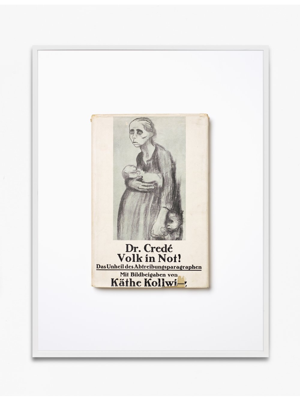 Dr. M. Crede-Hörder, Volk in Not! Das Unheil des Abtreibungsparagraphen (§218), 1927, Carl Reissner Verlag Dresden, Druck bei Gerold Verlag Pößneck, mit 16 Schöpfungen von Käthe Kollwitz