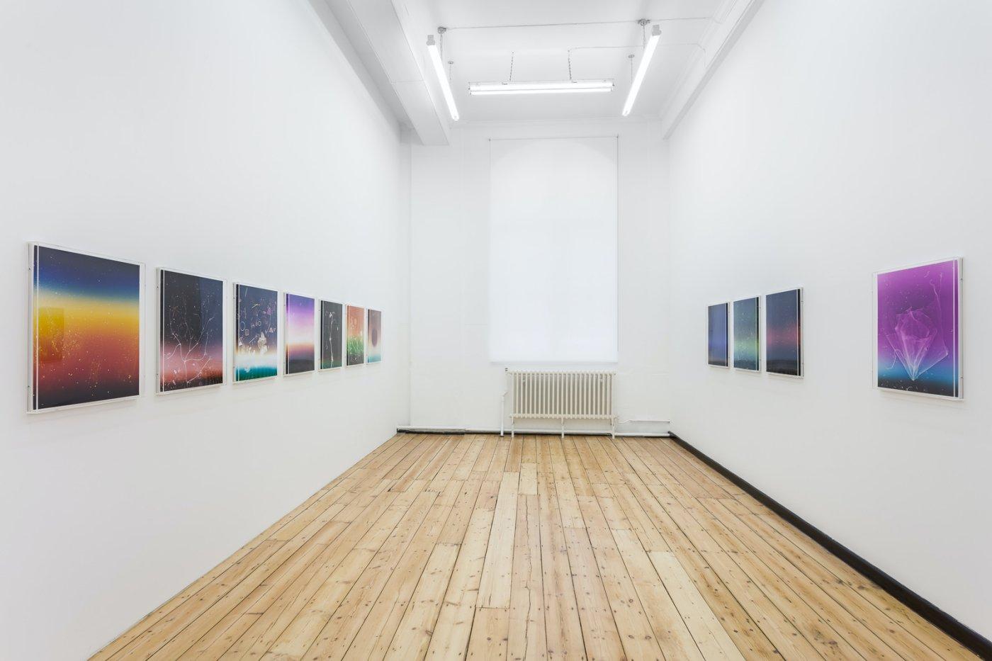 Maureen Paley Studio M Anne Hardy 2