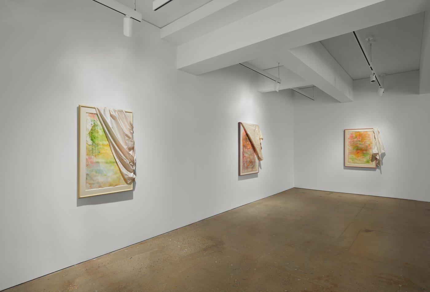 Nahmad Contemporary David Hammons 3