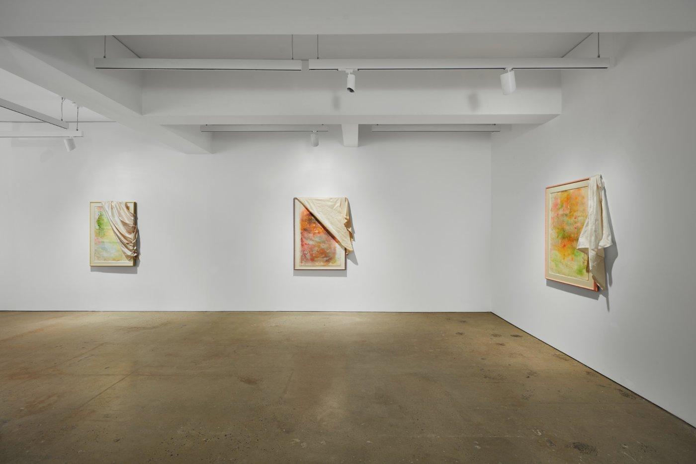 Nahmad Contemporary David Hammons 5