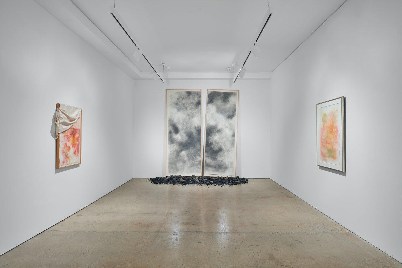 Nahmad Contemporary David Hammons 6