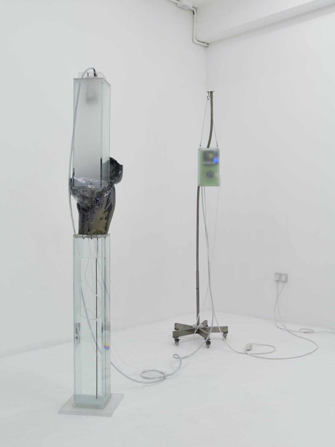 Nicoletti Contemporary Hugo Servanin 2
