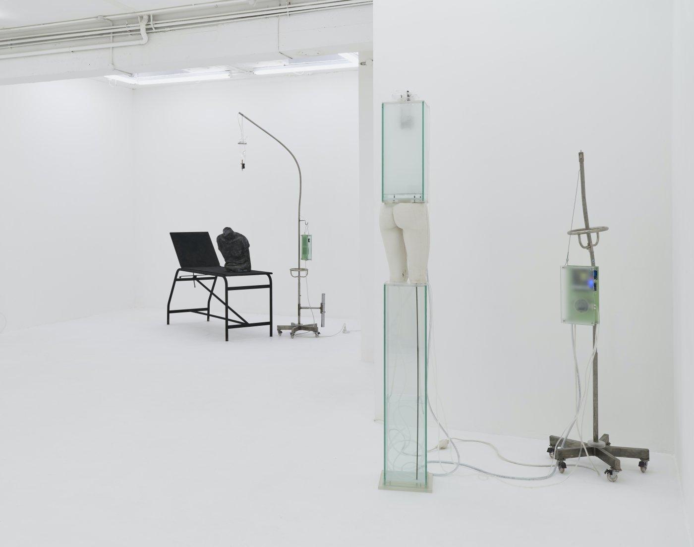 Nicoletti Contemporary Hugo Servanin 4
