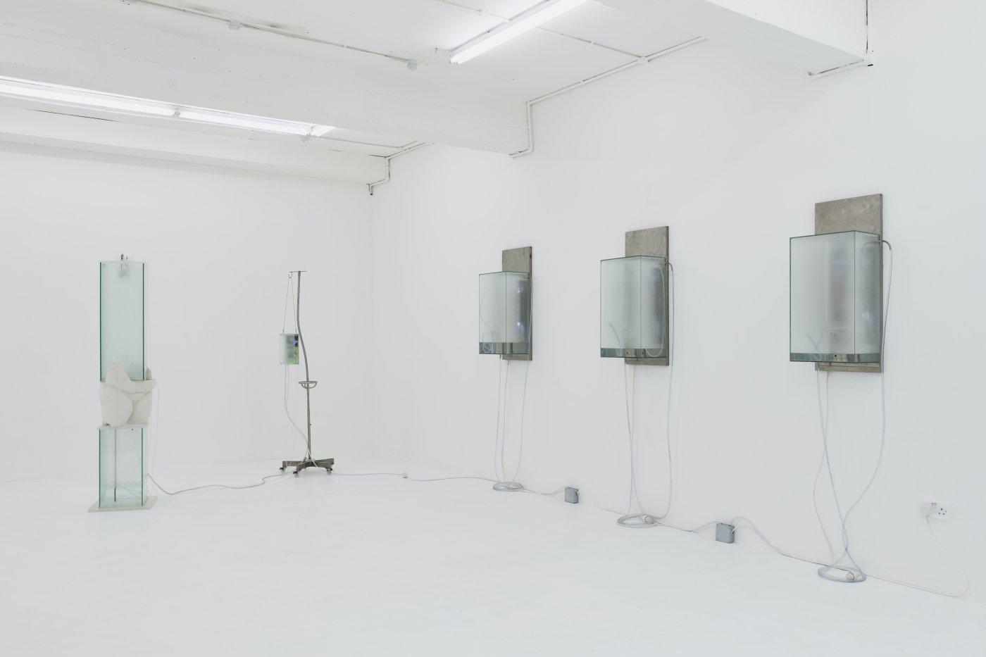 Nicoletti Contemporary Hugo Servanin 6