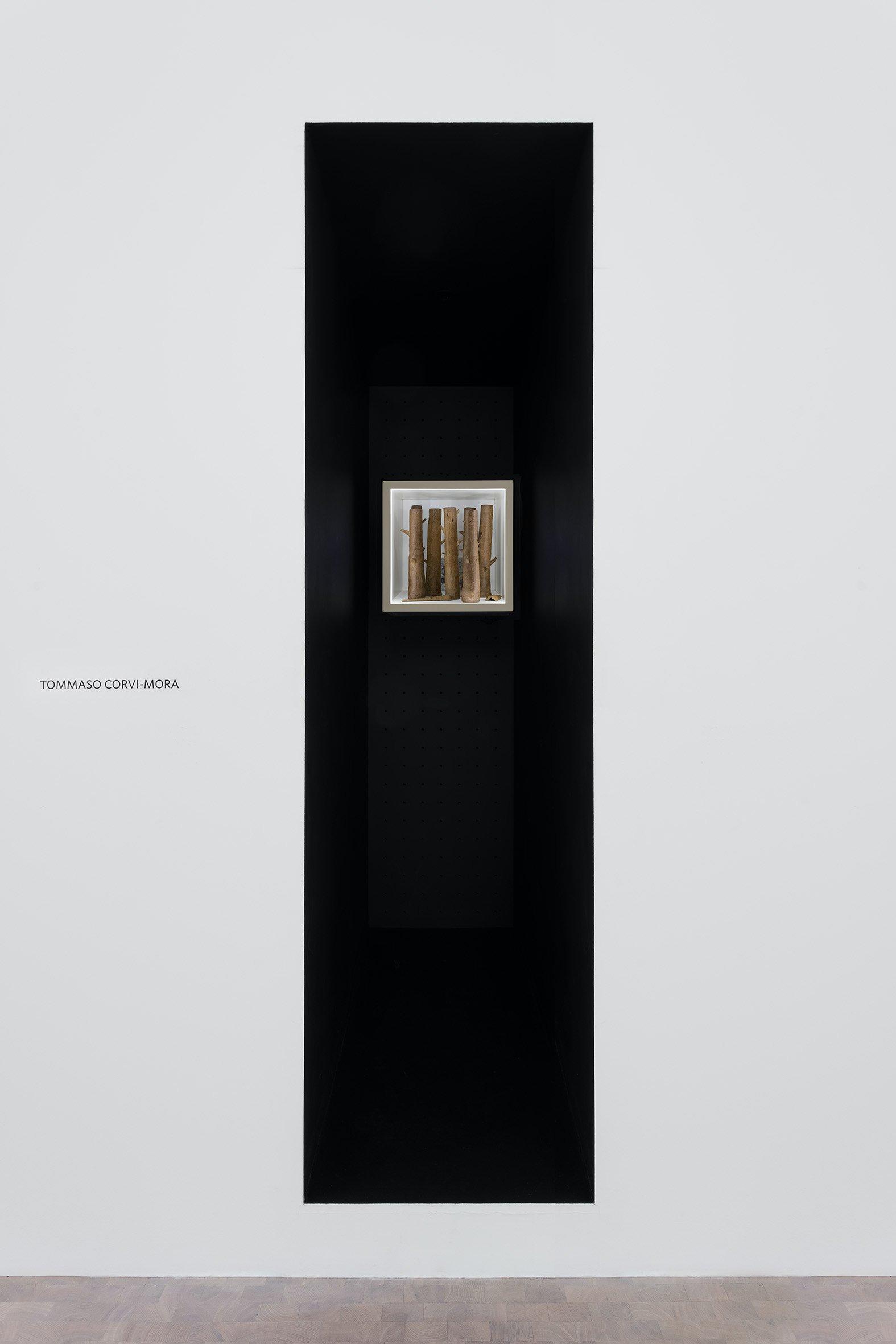 Pippy Houldsworth Gallery Tommaso Corvi-Mora 1