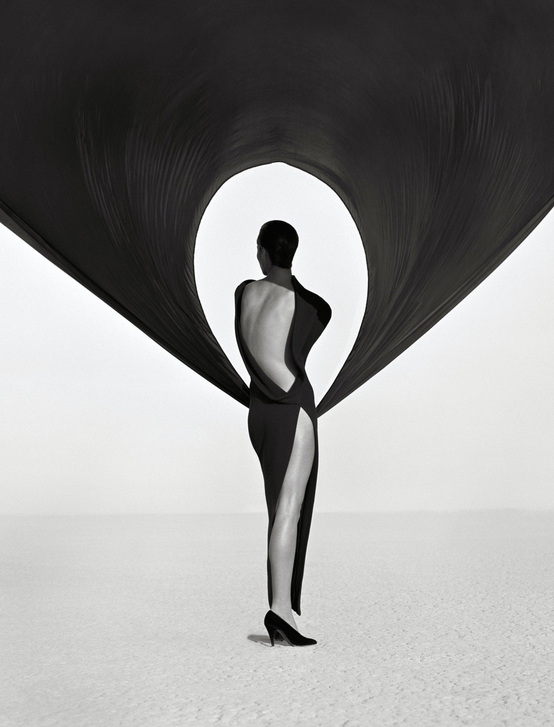Versace Dress (Back View), El Mirage