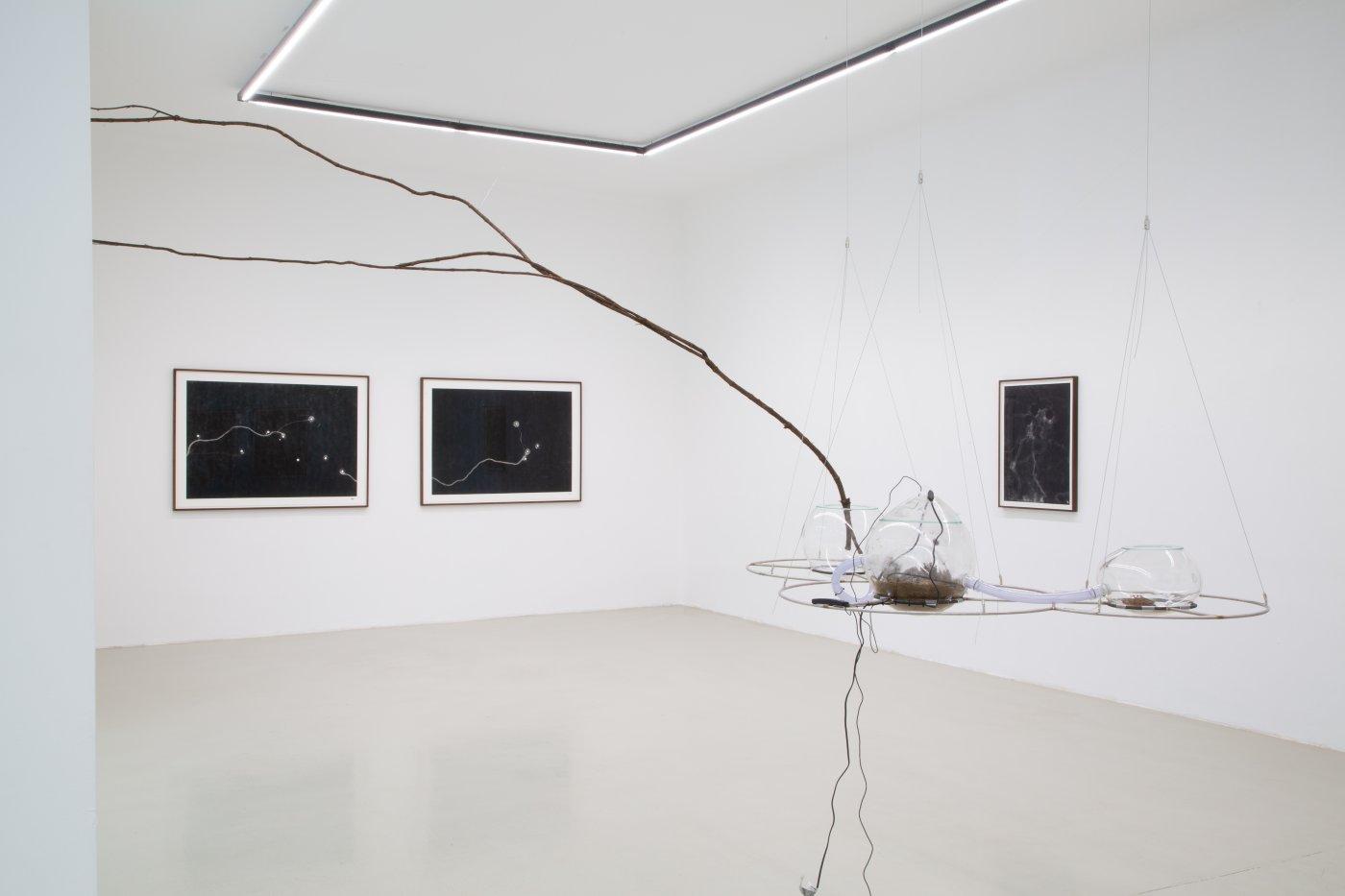 Galerie Kandlhofer Maximilian Prufer 6