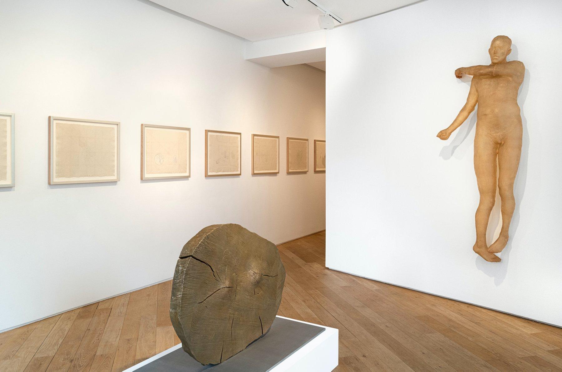 Galerie Lelong Co Matignon Kiki Smith 1
