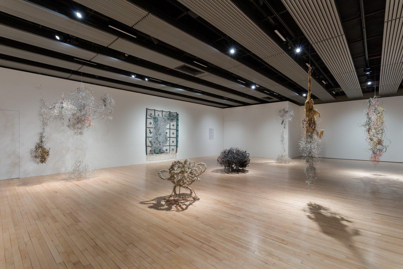 Hayward Gallery Igshaan Adams 3