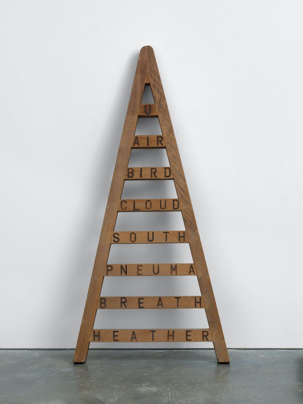 Air Ladder