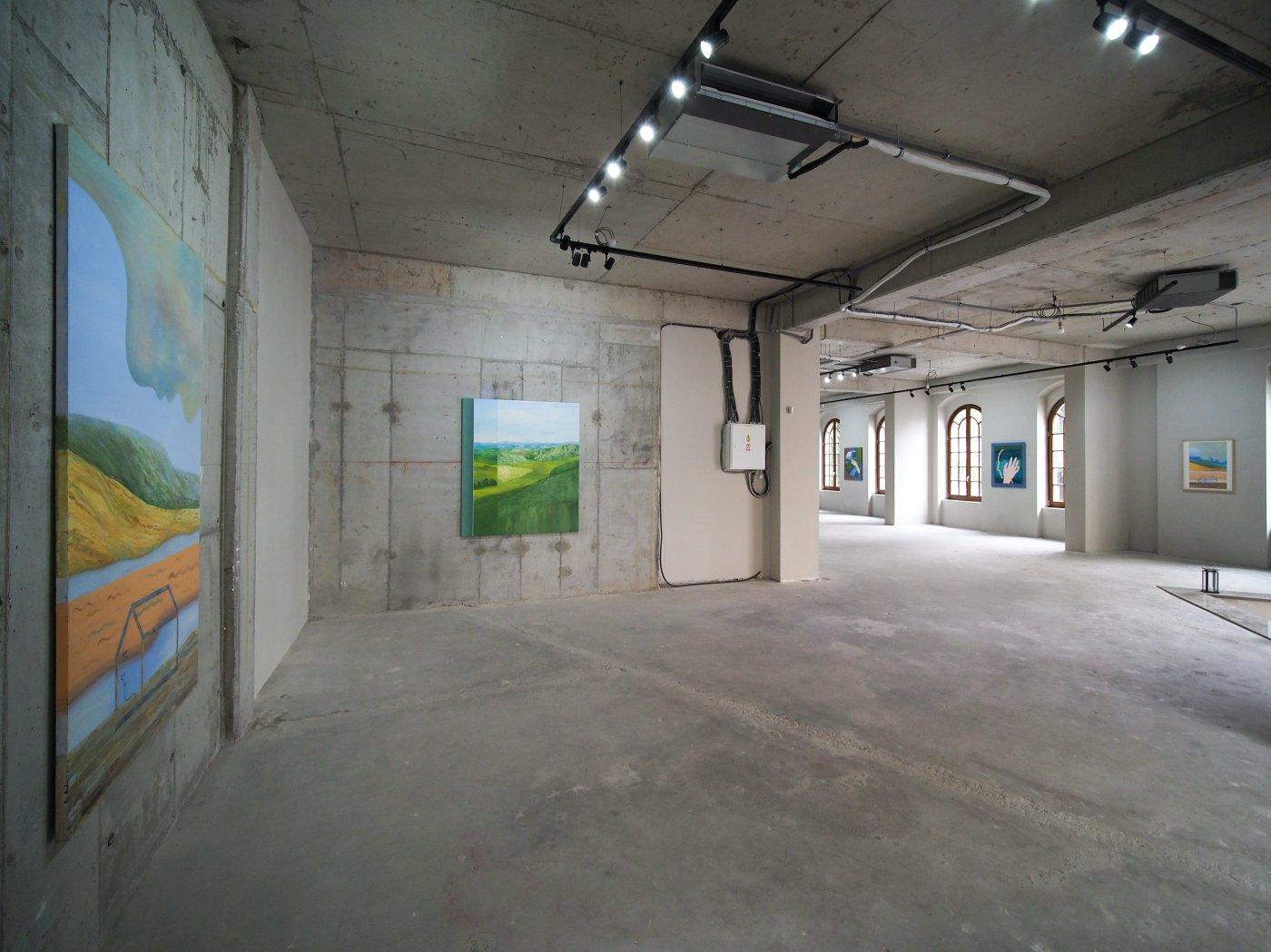 Mobius Gallery Codruta Cernea 4