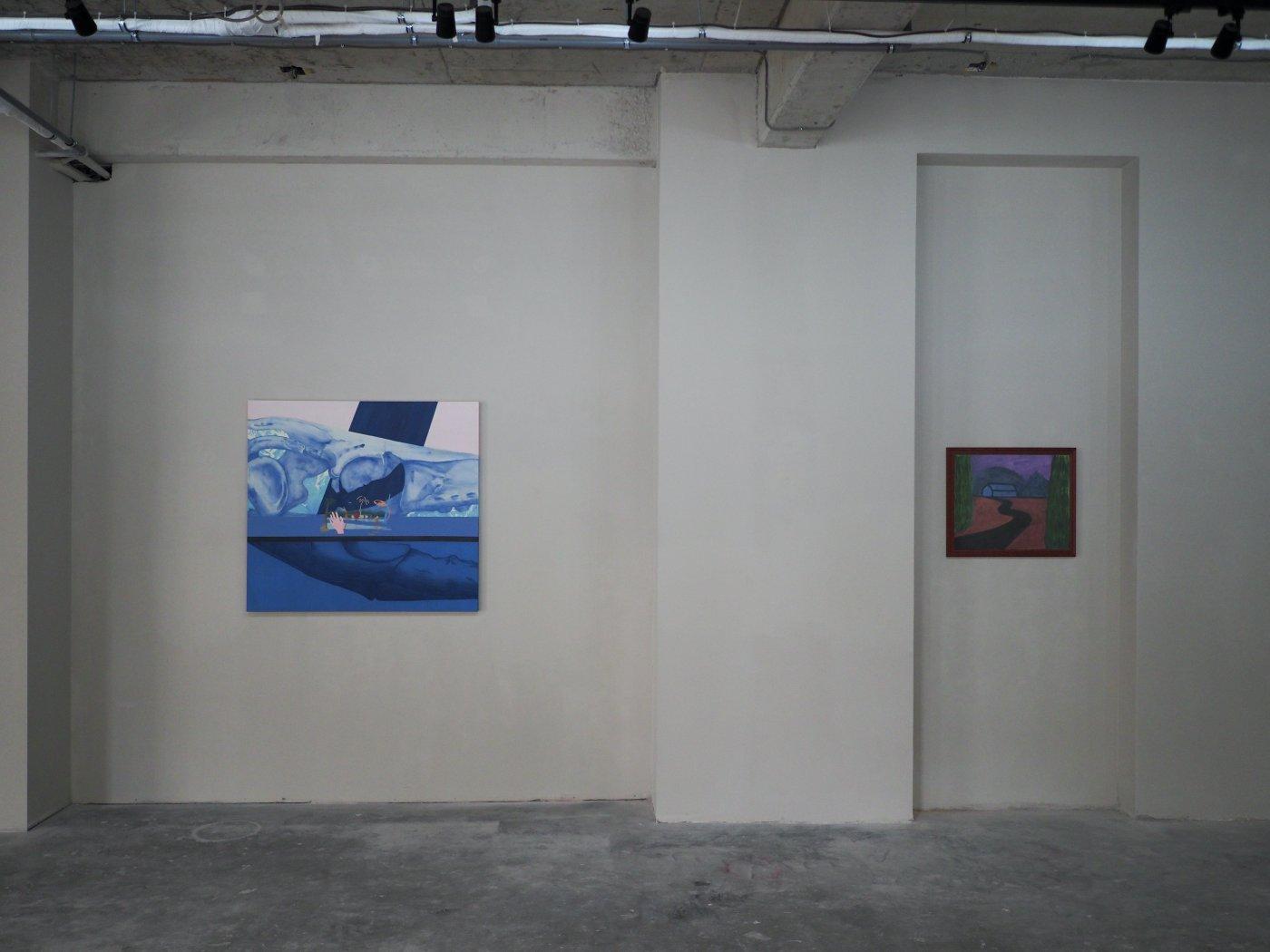 Mobius Gallery Codruta Cernea 6