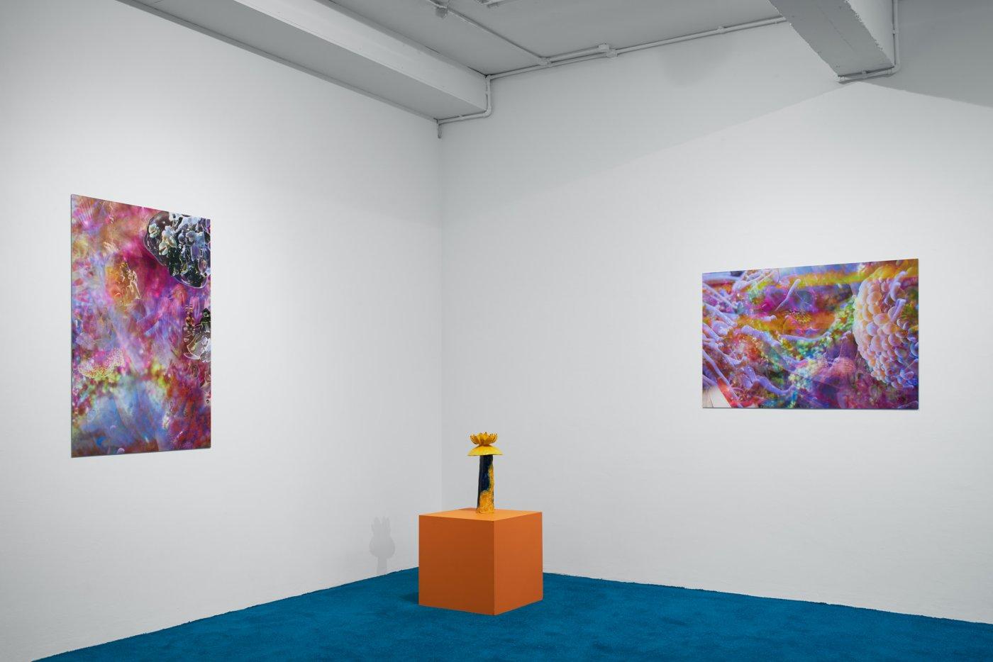 Nicoletti Contemporary Josefa Ntjam 3