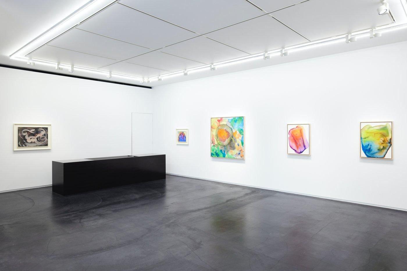 Taka Ishii Gallery Vivian Springford 5