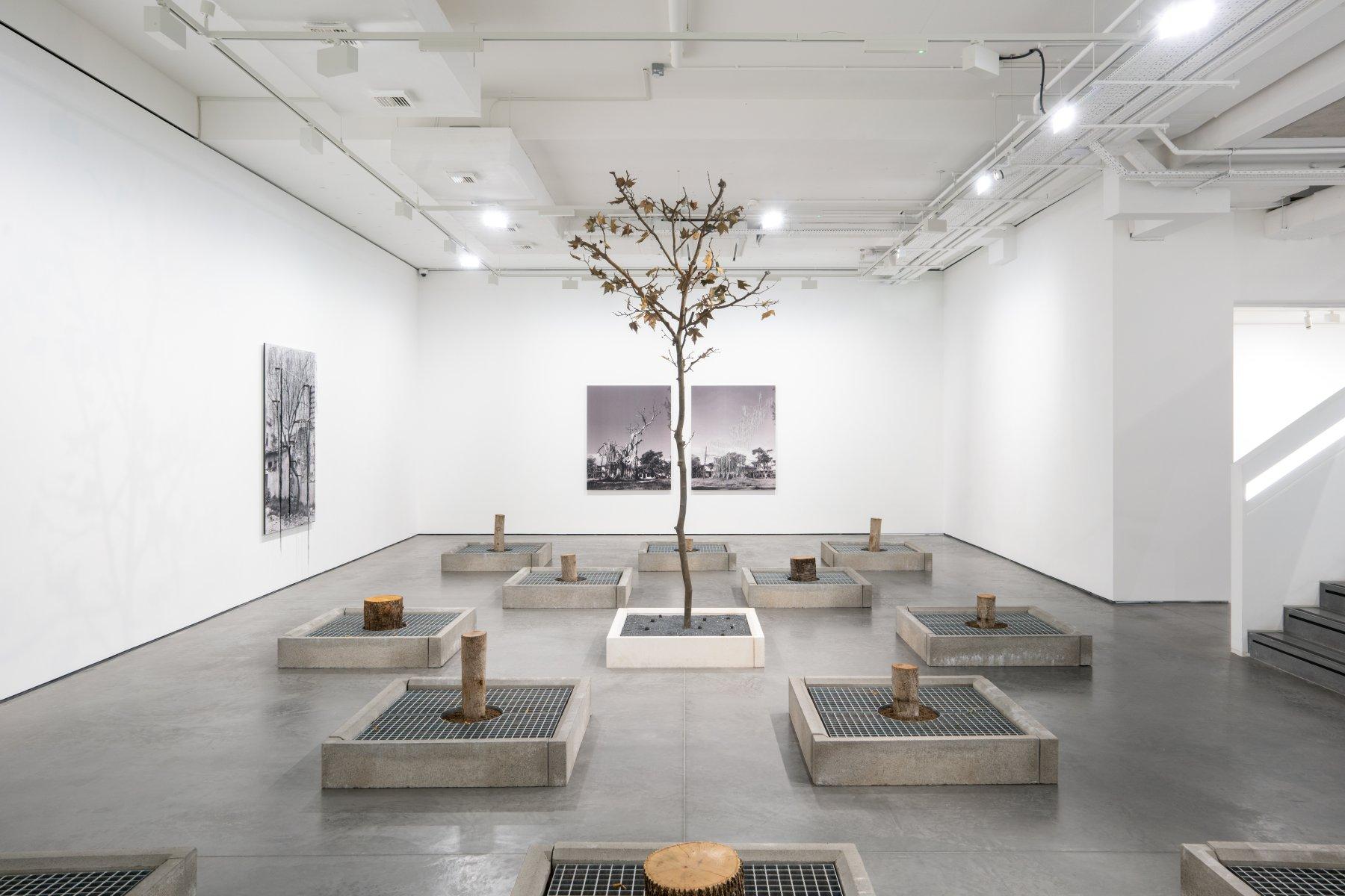 Goodman Gallery Carlos Garaicoa 1