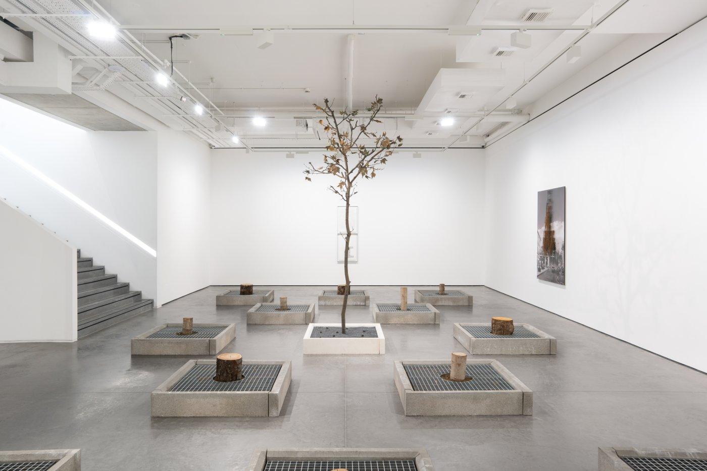 Goodman Gallery Carlos Garaicoa 2